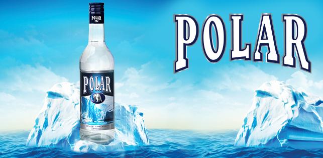 polar-web2